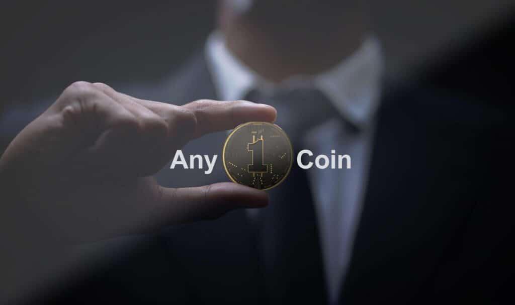 Any1Coin-truffa o affidabile